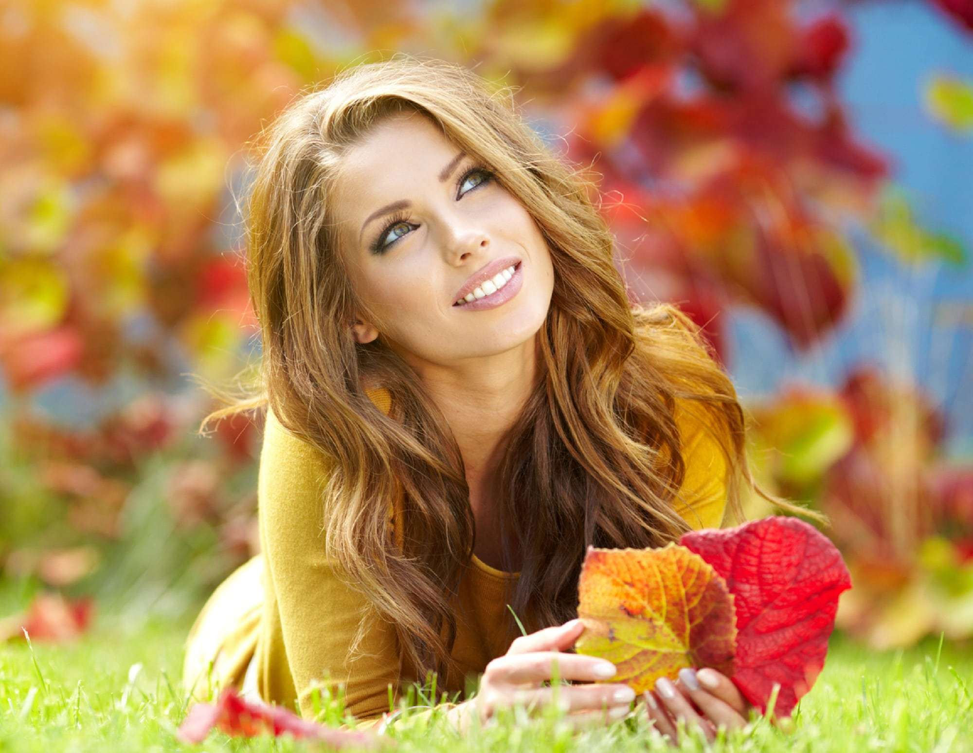 Fall Evening of Beauty